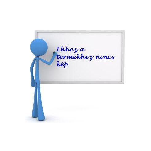 Legamaster Professional forgatható mágneses fehér tábla (whiteboard), 100x200 cm